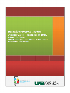 Home Visitor Program State Report 2015-2016